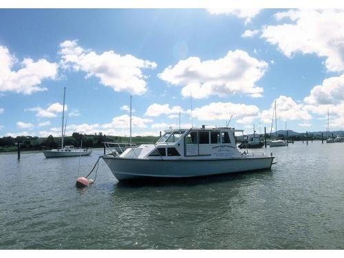 Charter Boat / Yacht - Dolphin Endeavour, Opua (Bay of Islands, Northland)