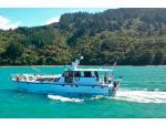Foxy Lady Cruises  - Charter Boat