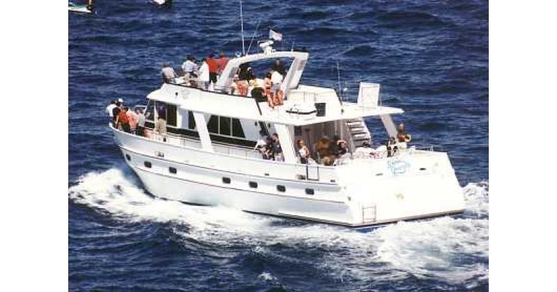New Zealand Yacht & Boat Charters: Sweet Georgia, Wellington