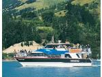 Black Cat Cruises - Charter Boat, Akaroa & Lyttelton  / Christchurch